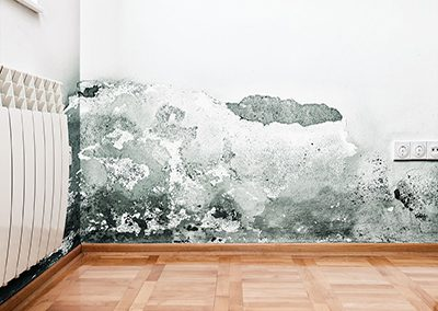 43564496 - mold and moisture buildup on wall of a modern house